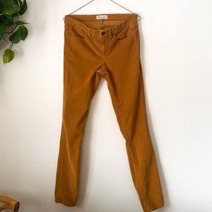 Madewell Soft Stretch Corduroy Pants